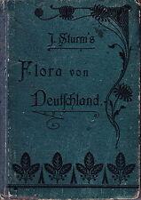 Flora von Deutschland J. Sturm, Buch 1903 10. Band Röhrenblütler