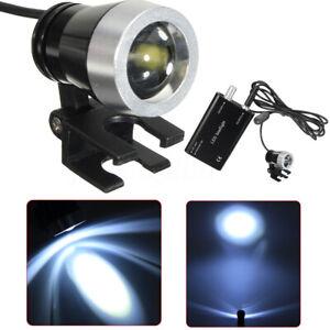 Dental LED HeadLight Lampe 3W Scheinwerfer Kopf Licht für Lupenbrille Zahnarzt ❤
