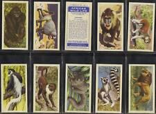 Full Set, Brooke Bond, African Wild Life 1962 VG (w11q6-325)