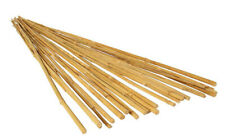 Natural Bamboo Plant Stake Tomatoes Plant Support Gardening 25 pcs Tan 4 Foot