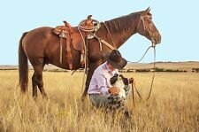 """perfect 36x24 oil painting handpainted on canvas"""" cowboy,horse,dog""""N2187"""