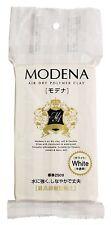 Pajiko Padico Resin clay modena 250g White New Japan