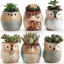 Mini Owl Flower Succulent Ceramic Breathable Plant Pots 6pcs