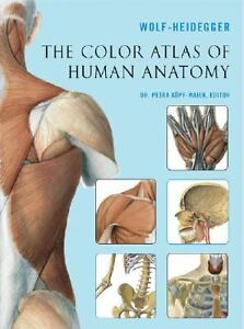 The Color Atlas of Human Anatomy (2006, Paperback)