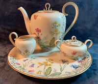 "K&A Franconia-Krautheim Selb Bavaria ""Meadow Flowers"" Vintage China Drink Set"