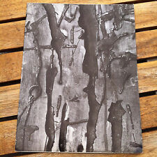 Sculpture in Wood by Pietro Consagra 1965 Galleria Odyssia Exhibition Catalog NY