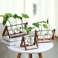 Hydroponic Plant Vases Flower Pot Transparent Vase Wooden Frame Tabletop Planter