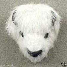 WHITE BUFFALO-CUTE!Collect Fur Magnets. PROFTS GOES TO OUR UNWANTED PETS PROGRAM