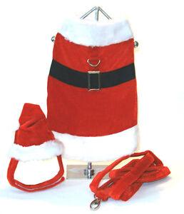 Santa Paws Holiday Outfit