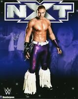 "WWE SIGNED PHOTO TYLER BREEZE NXT WRESTLING 8x10"" BREEZANGO"