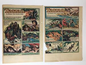 Tarzan Sunday Pages, 1950, Hogarth & Lubbers Art, Complete Year
