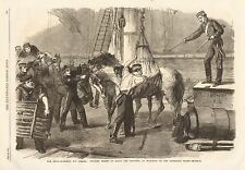 1862 ANTIQUE PRINT-SHIPPING HORSES ON BOARD BY HYDRAULIC CRANE