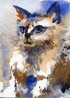 "V.V. ACEO Art Painting Pictures 2,5""x3.5"" Artist V.Vlasiuk Watercolor Cat Kitten"
