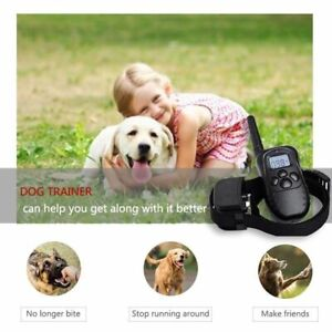 Rechargeable Petrainer Electric Dog Training Collar LCD Remote 300M Pet supplies