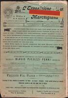 L'ESPOSIZIONE MARCHIGIANA-RIVISTA ILLUSTRATA-ANNI 1904-1905 N. 24 FASCICOLI