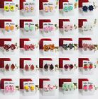 NEW 1 PAIR CLUSTER CLIP-ON EARRINGS FASHION WOMEN KIDS GIRL LADIES FREE SHIPPING