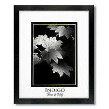 One 11x14 Black Wood Frames, Clear Glass, White/Black Mats for 8x10 photo