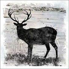 Carol Robinson: Birchbark Deer Fertig-Bild 30x30 Hirsch Wildtiere schwarz modern