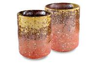 Mino Ware Traditional Japanese Yunomi Tea Cups Set of 2 Shigaraki