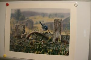 Greg Postle Limeted Edition Print of Birds on Country Fence (Unframed)
