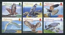 Alderney 2008 MNH Resident Raptors Pt 3 6v Set Owls Falcons Birds of Prey Stamps