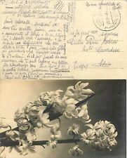 1191 - RSI - Posta da campo 801 su franchigia per Adria (Rovigo), 21/02/1944