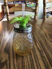 "Pineapple Mason Jar Tumbler Drinkware with Lid and Straw Glass 9"" Tall W/Straw"