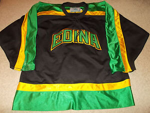 VTG-Edina Hornets Minnesota High School Game Worn/Used Hockey Jersey Gemini