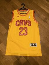 NBA Embroidered LeBron James Cleveland Cavaliers Jersey (Men's M)