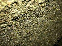 Lactuca Virosa Wild Lettuce Leaf Certified Organic Bulk Herb
