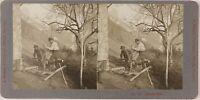 Suisse Foto Stereo Johannes Meiner Fotografia Zurigo Th2n1 Vintage Platino