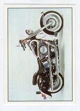 figurina SUPER MOTO PANINI NUMERO 142
