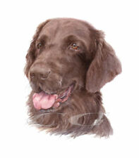 FLAT COAT RETRIEVER Liver.     3 Blank Dog greeting cards by Christine Groves
