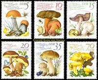 EBS East Germany DDR 1980 - European Edible Mushrooms - Michel 2551-2556 MNH**
