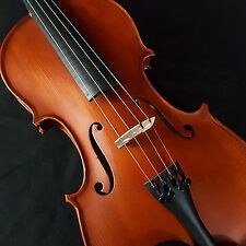 New Euro Standard Antiquated 4/4 Violin Outfit Romanian Made Carbon Fiber Bow
