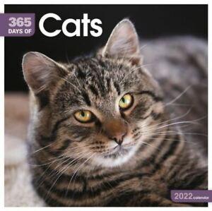2022 Calendar - 365 Days of Cats