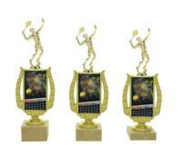 Darts MONTIERT silber blau kompl Gravur 24,5-26,5cm 3er Serie Pokale
