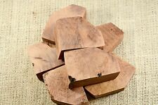Briar Blocks - Ebauchons 19 BPB-R17 size For Bent Pipes