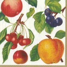 Caspari Paper Luncheon Napkins, Botanical Chintz Ivory (12890L)