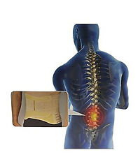 Back Assist II for Lumbar Back Support - Beige (L) NIB $89.99 NEW