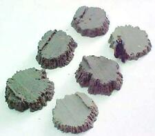 Stumps Assortment #6 cast resin All Scales see chart O,S,HO,HOn3 logging scenery