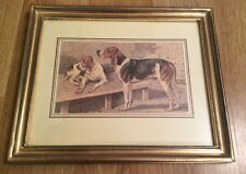 NEW LOVELY FRAMED PHOTO OF TWO DOGS IN A GOLD GILTED FRAME