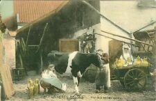 Belgium, Last of the Cow's Milk, Laitieres Belges, Trait de la derniere vache