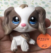 💖🐶AUTHENTIC Littlest Pet Shop #2254 Cocker Spaniel +1 Random LPS