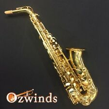 Buffet Alto Saxophone, Step Up Student 100 Series, Includes Back Pack Case.