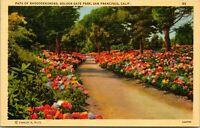Vtg 1930's Rhododendron, Golden Gate Park, San Francisco California CA Postcard