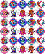 30 x Paw Patrol Skye & Everest Fun Party Edible Rice Wafer Paper Cupcake Toppers