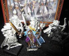 Warhammer Fantasy Battles High Elves Shadow Warriors squad