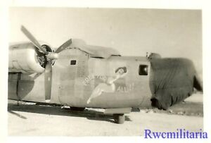 """Org. Nose Art Photo: B-24 Bomber """"FREE FOR ALL!!""""!!!"""