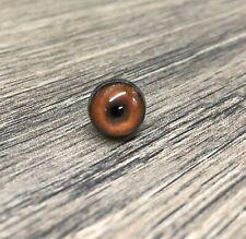 Universal 12mm Taxidermy//model making//needle felting eyes AA